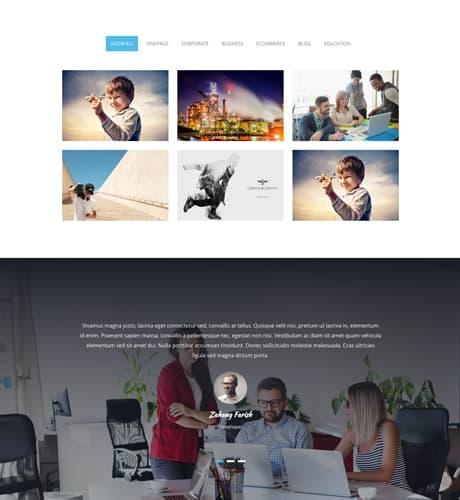 Free One Page Responsive Wordpress Theme 1