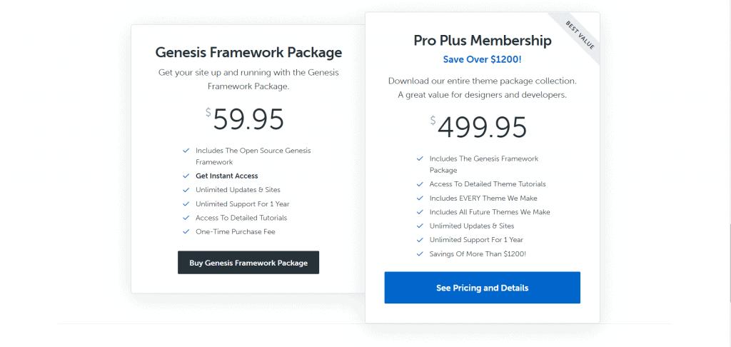 12 Best WordPress Theme Framework of 2020 2