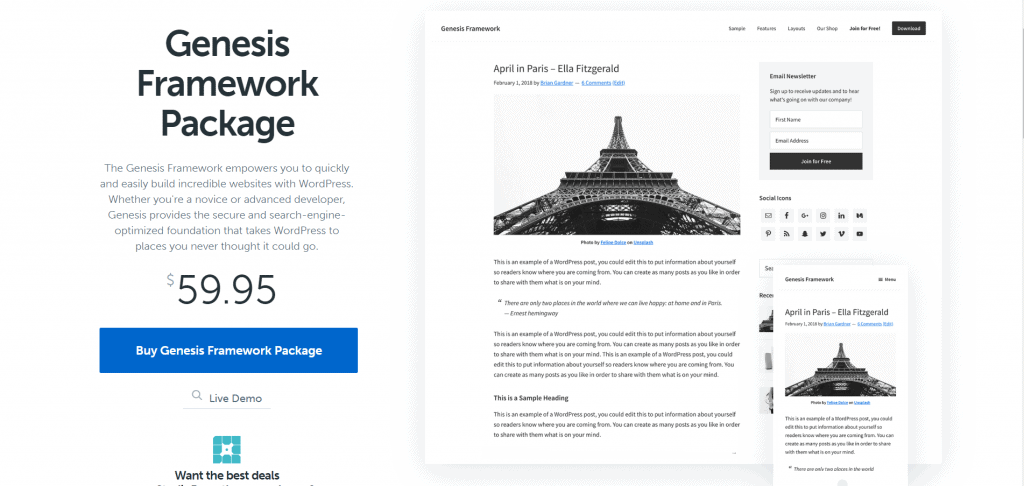 12 Best WordPress Theme Framework of 2020 1